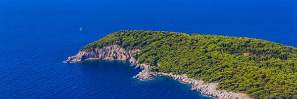 dubrovnik : privateexcursions:Hidden beauties of Elafiti islands