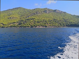 Dubrovnik : privateexcursions:Island Mljet - Land of Green